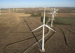 Horse Hollow Wind Energy Center (USA)