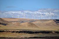 Shepherds Flat Wind Farm (USA)