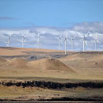 Shepherds Flat Wind Farm (USA)