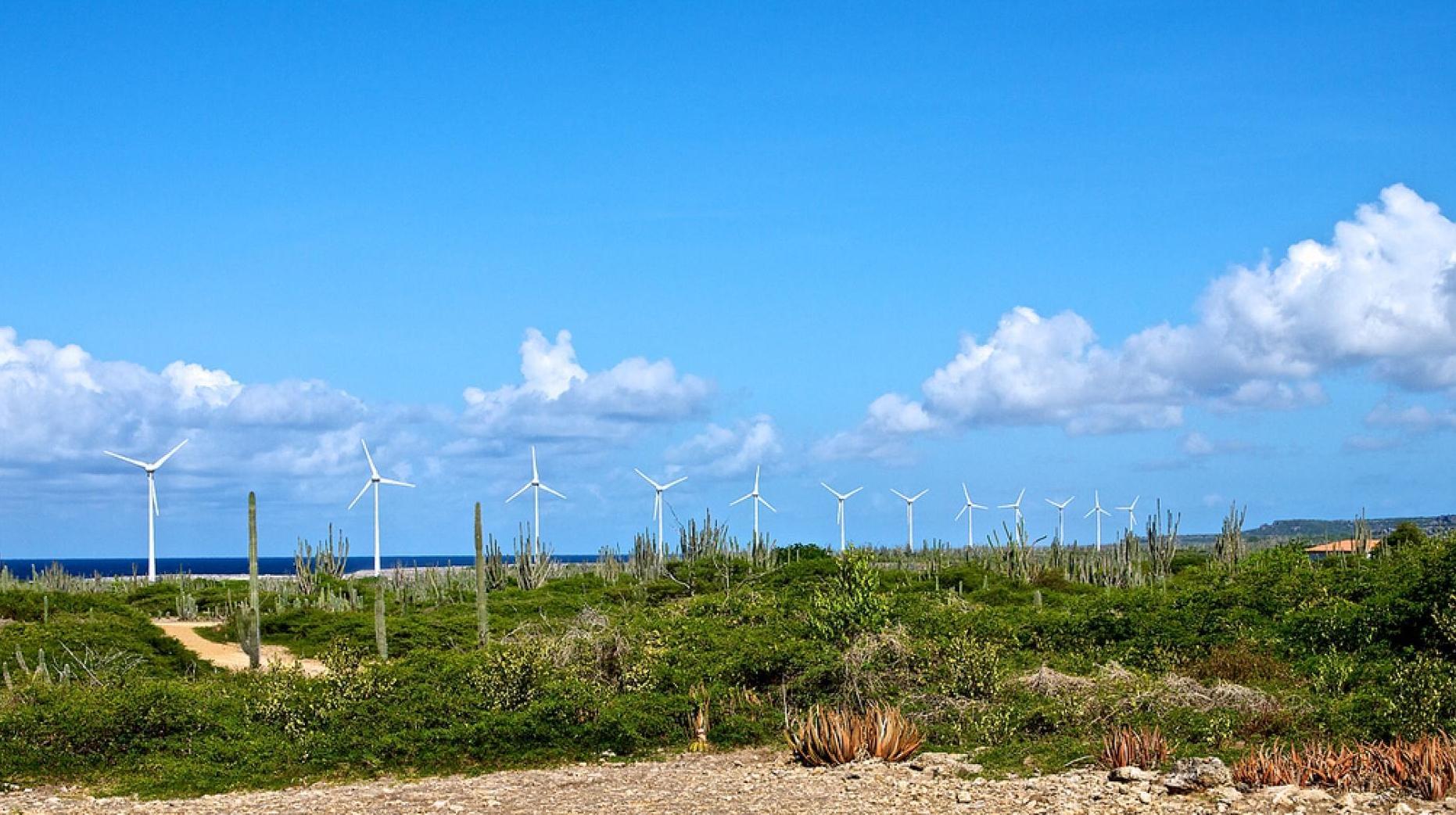 bonaire-wind-ngsversion-1513909000219-adapt-1900-1.jpg